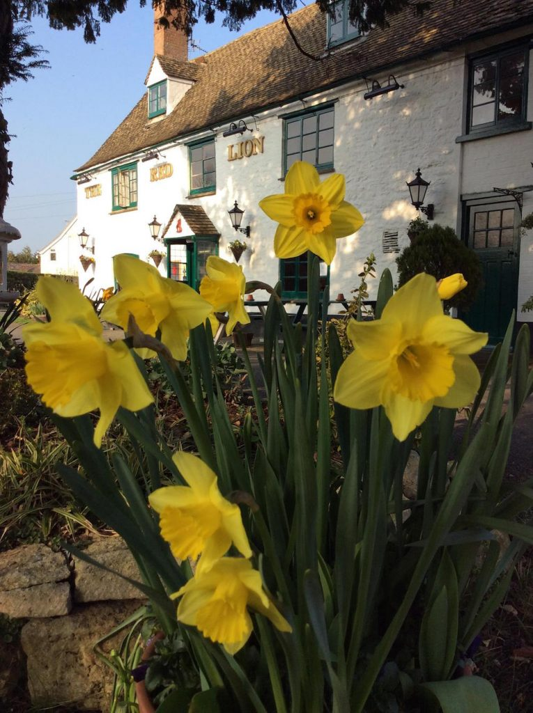 The Red Lion, Northmoor, Barefoot Campsites, Appleton